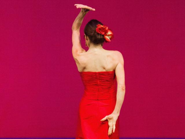 flamenco in Landshut und Deggendorf präsentiert von www.tanzschule-flamenco.de unter der Leitung von Michaela Schabel