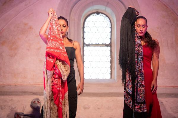"""""""Flamencos en route"""" präsentiert von www.tanzschule-flamenco.de"""